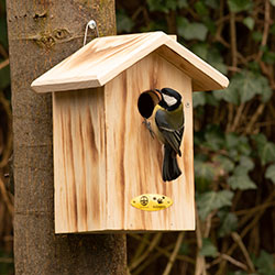 Nestbox Anson Burnd